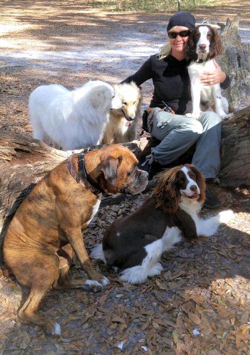 Dog Training Pasco County, FL | Dog Trainer Port Richey